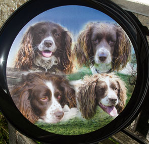 Four dogs blended onto wheel cover