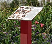 HPL Lectern Display on Wooden Post