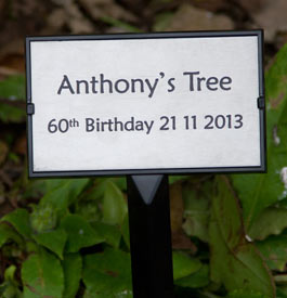 Engraved plaque with a tree stake